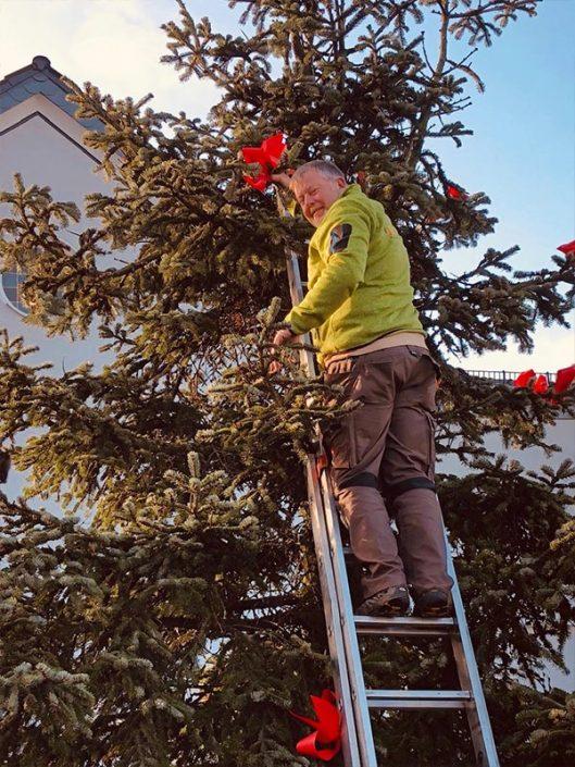 Weihnachtsbaum-Aufstellen 2019