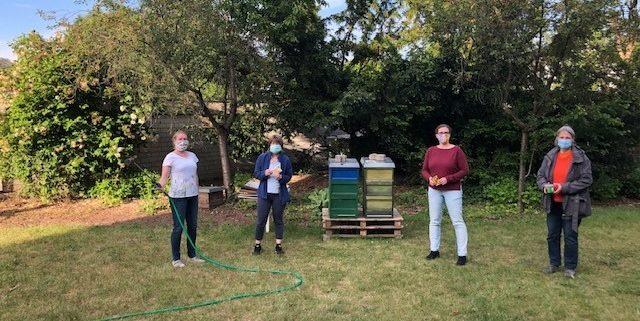Bienenprojekt: Frauspätstück säht Blumen